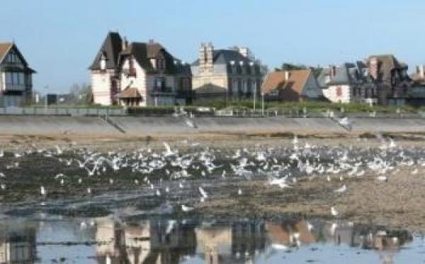 Villas du front de mer